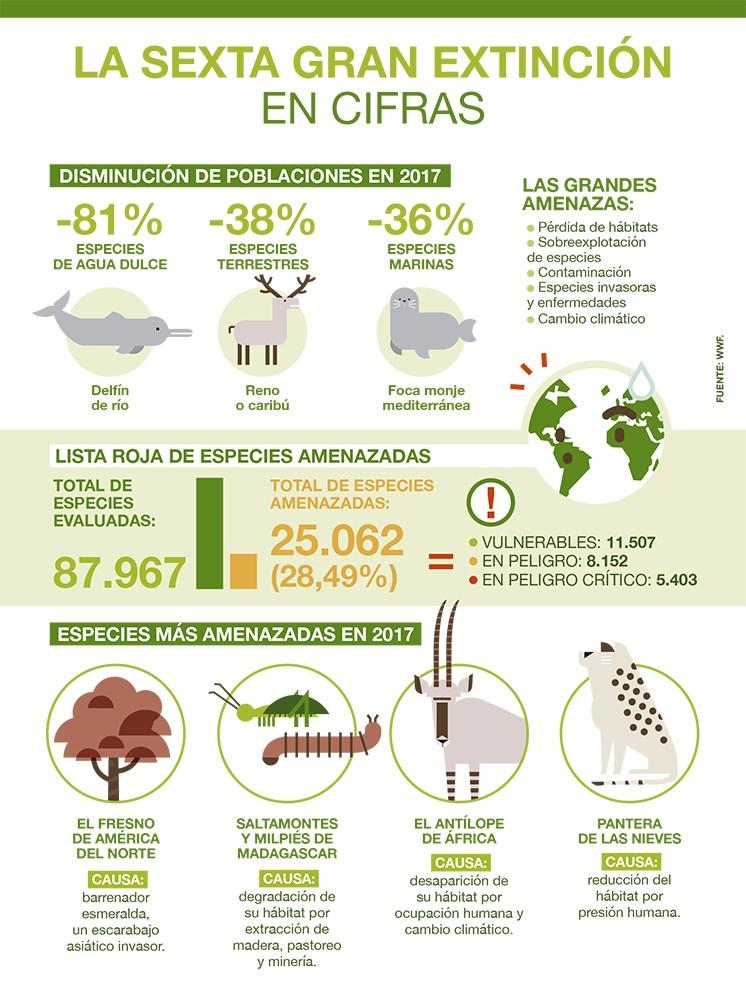 Infografia_Animales_esp2